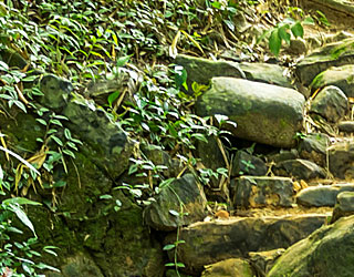 Cedar Grove Cemetery - Sponsor the Water Feature
